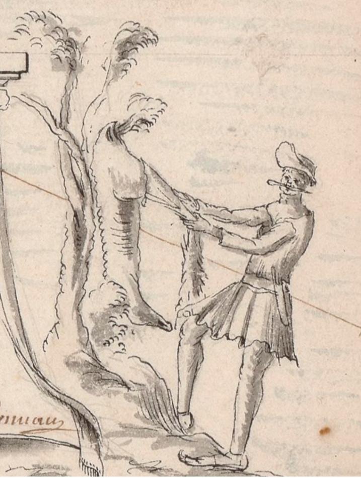 Boucanier Skinning
